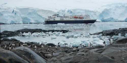 Port Lockroy penguins & ship2 (1024x514)